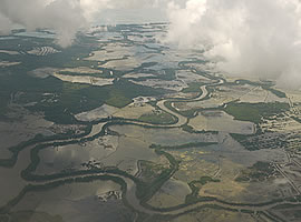 タラカン島養殖池